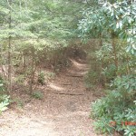 Trailhead from Lake Conasauga